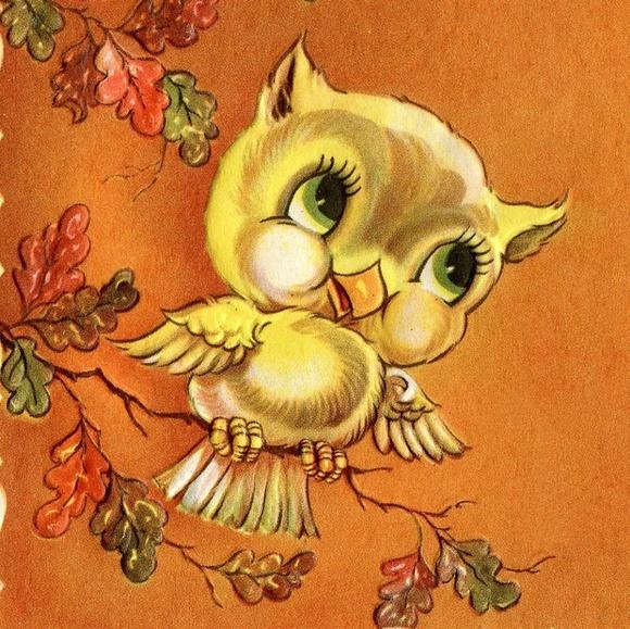 poshing_owl